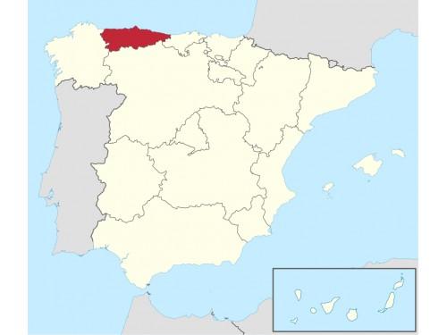 Licencia Asturias